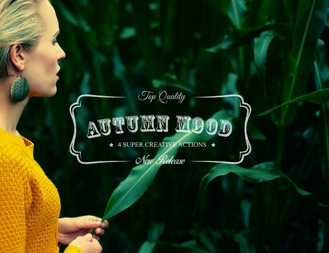 Autumn Mood - 4 Premium Photoshop Actions - Photoshop Actions Lorelei Web Design
